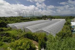 農園・牧場・工場風景
