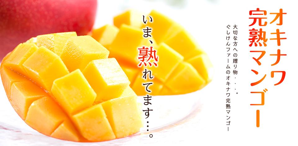 南国沖縄の日差しを浴びたあま~いマンゴーフルーツです。